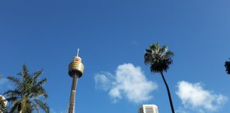 Sydney Gay Beaches