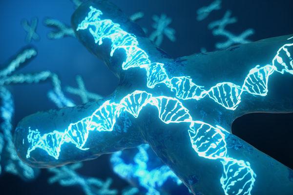 genetics, gay news, Washington Blade